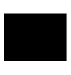Widelec Odyssey R-25